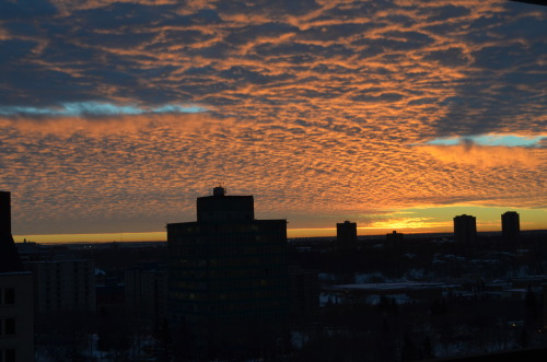 Fantastic bumpy sunrise over east Edmonton on Monday morning. The opening in the clouds look like evil eyes watching the city.