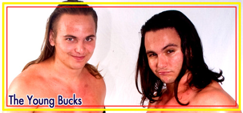 The Young Bucks (Nick & Matt Jackson), former Campeonatos de Parejas, are the 13th team entered into the 2013 Tag World Grand Prix.