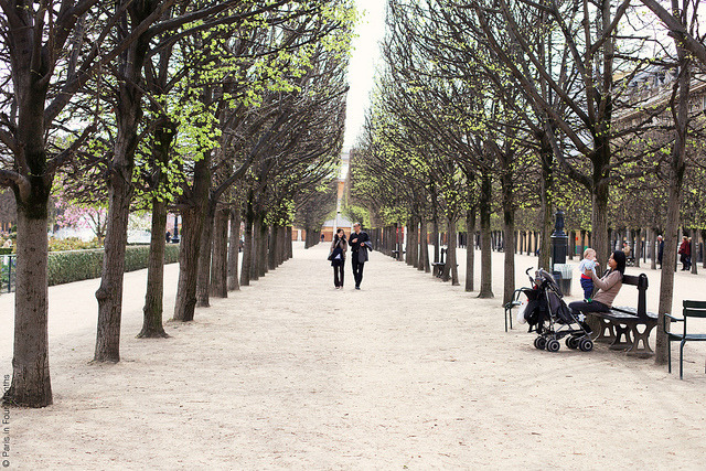 | ♕ |  Spring at Jardin du Palais Royal  | by © Carin Olsson