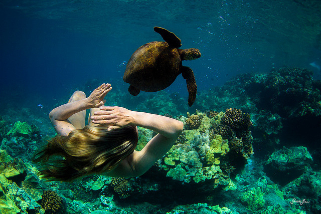 amanda and the sea turtle by SARAΗ LEE on Flickr.Beautiful.