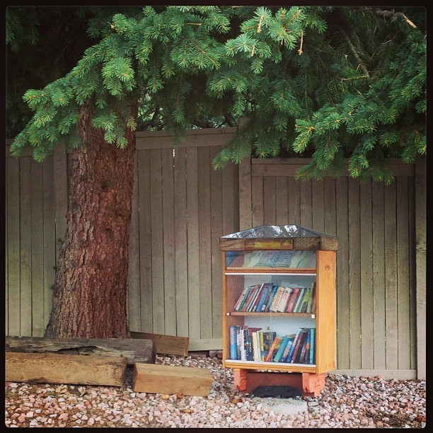 the tiniest library.