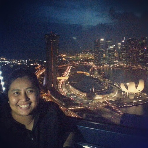 View from the top (at The Singapore Flyer)