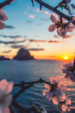 photography tumblr sky water flowers wallpaper sun sunset spring sunrise vacation escape cloud island weather tumblr post background Let's Escape