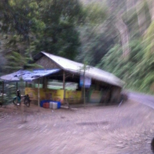 Perjalanan ke kota #road #warung #forest #trees #eastjava #indonesia  (at Puncak Gunung Kumitir)