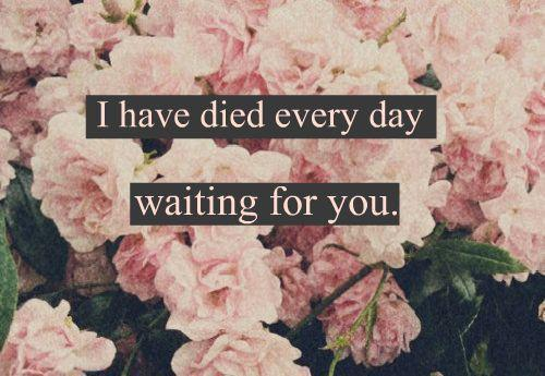 I have died every day waiting for you. Darling don't be afraid I have loved you for a thousand years. I'll love you for a thousand more.