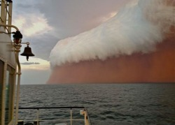 losed:  A white shelf cloud caps brownish dirt from a dust storm, or haboob, as it travels across the Indian Ocean near Onslow on the Western Australia coast in this handout image distributed by fishwrecked.com and taken January 9, 2013. (Reuters/Brett Martin/fishwrecked.com)
