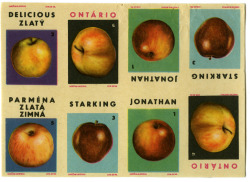 How do you like them apples?Czech matchbox labels. Found here (via Kýbl).