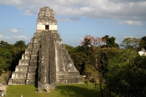 5 creative ways to spend the Mayan apocalypseWith Dec. 21, the supposed date of the Mayan apocalypse, fast approaching many are prepping for doomsday bashes, marking the day with food, drink and tongue-in-cheek apocalypticism.