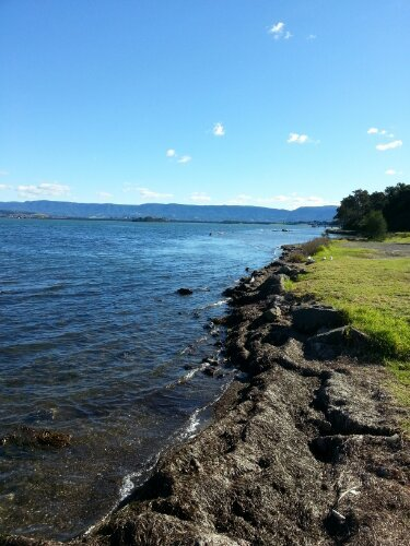 Down at Lake Illawarra.View Post