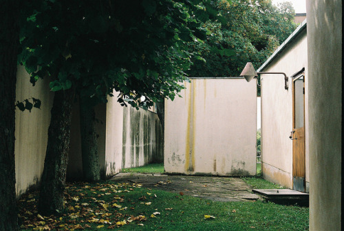 caulifl0wer:  2011_08_22 by Maja K K on Flickr.