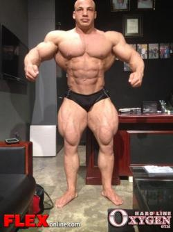 muscledog:  Those quads! Dayum
