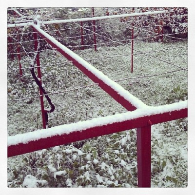 Love how only one side gets to carry the snowflakes #red #snow #railing