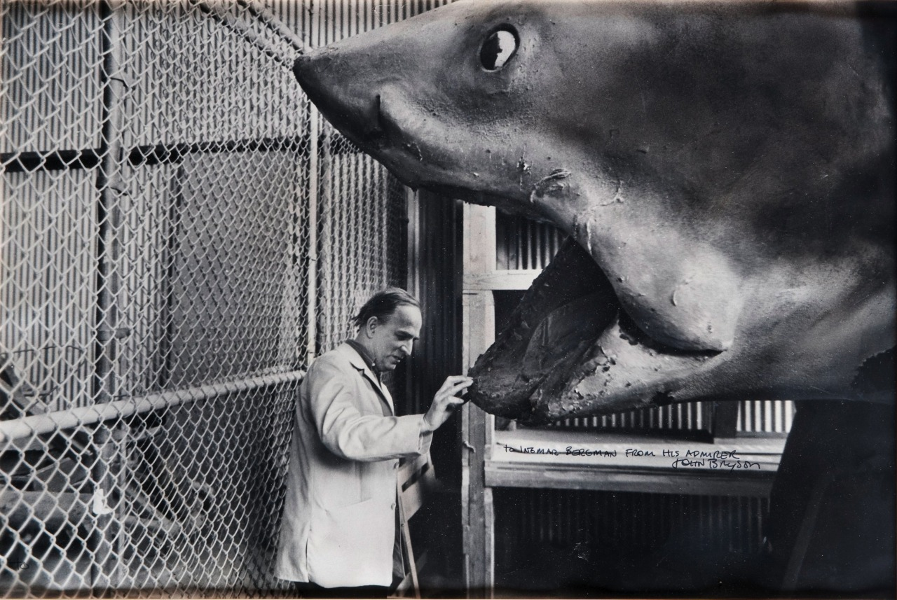 Background story: Ingmar Bergman and the shark from Jaws by John Bryson, 1975