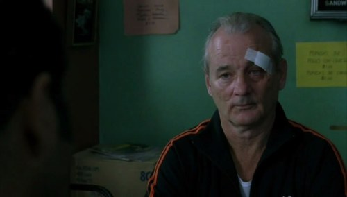magic-of-cinema:  Broken Flowers 2005 / Jim Jarmusch
