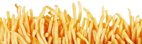 alyssaties:  I FOUND A TRANSPARENT WALL OF FRENCH FRIES ON GOOGLE IMAGES YOURE FUCKING WELCOME