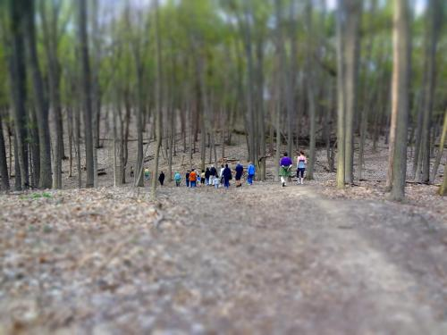 Last week I helped host this nature walk through the Bird Hills Nature Preserve in northwest Ann Arbor. Our guide from the Nature Area Preservation, Dana, was awesome at interpreting for our group that was full of a wide range of ages. We even had the opportunity to see the aftermath of a controlled burn! I think everyone had a great time and learned a lot about our local nature ecosystems.