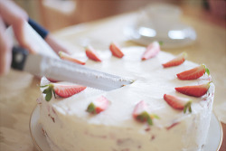 cinnahearts:  strawberry cake (by Schwarzwaldfotograf)