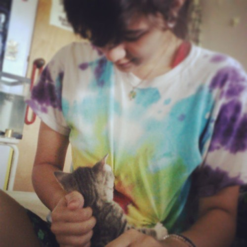 #meow #kitty #cat #kitten #cute #playing #whyareyouhungryyetagain #tiedye #cutegirl @skyedrake