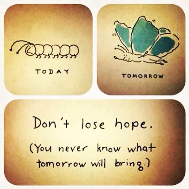 Don't lose hope #quote #chance #hope #butterfly #caterpillar #smile 🐛