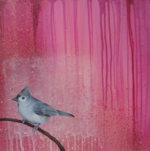 "CYCLE ""Birds of New England, Tufted Titmouse"" mixed media on panel 15"" x 15""  $650 Cycle CYCLE was born in 1971. He grew up writing graffiti and skateboarding. CYCLE received his BFA from George Washington University in Washington DC and then his Masters from the Academy of Art University in San Fran- cisco. He makes his living producing Fine Art, Illustration and Graphic Design. When not producing Fine Art, Illustra- tion and Graphic Design, CYCLE enjoys graffiti and skateboarding."