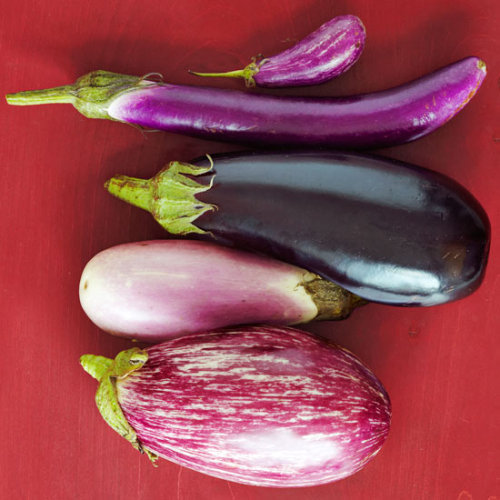Daily Bite: Going meatless for Monday? Try one of our 20 favorite eggplant recipes!