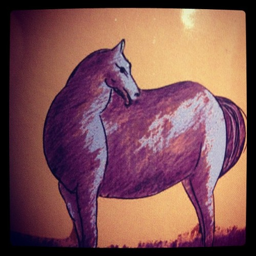 It's a fat horse kind of night 😉👍