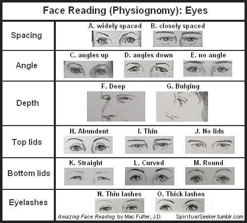 "Face Reading (Physiognomy): Eyes Since eyes are the primary sensory organ for light, it is no surprise that eyes have been called the windows of the soul. Our eyes reflect our outlook, our attitudes, and our openness. Conversely, they tell when we filter or screen out information. Only the very noticeable examples count. If you cannot immediately tell whether a person's eyes are very wide apart or very close together, don't read the feature.  SPACING: A. Widely Spaced (more than one eye's width apart): You have a broad, open perspective and a far-sighted imagination, but you hate dealing with details. You may be less grounded than most people and may even be considered ""spacey"" by those with a narrower field of view. Your challenge is gaining the financial reward you deserve for your broad insights, because compensation for your efforts is a detail you may overlook. B. Closely Spaced (less than one eye's width apart): You are very focused on details and excel at exacting tasks where minute details are important. You do well in positions that require extreme focus, such as accounting, technical support, proofing documents and the like. Your challenge is learning to see the big picture and relating to others on their terms ANGLE: C. Angles Up (outer corner higher than inner corner): You are good at inspiration and imagination. You are an optimist with a focus on the positive things in life. You expect things to turn out for the best. This attitude allows you to accomplish goals others would never try. Your challenge is to keep an even keel if plans don't work out as expected.  D. Angles Down (outer corner lower than inner corner): You don't see the world through rose-colored glasses. In fact, you expect problems, and you are especially good at spotting potential trouble. You may find that others come to you with their problems because your eyes also show a genuine compassion for the suffering of others. You are quick to admit your errors and correct them, and you expect others to do the same. E. No Angle (inner and outer corners on same level): You have a balanced view of life and tend to be pragmatic (sensible, businesslike) and objective. You are not easily discouraged and possess resilience under stress. If plans don't work out at first, you can continue on undaunted until they do. You are also concerned with fairness and justice.  DEPTH: F. Deep (eyes are deep in sockets): You may seem calm and relaxed, but you are constantly evaluating everything. Even when you are nodding your head, it doesn't mean you are agreeing with what's being said. You question and weigh matters carefully and need proof before accepting anything. You protect your inner self by being reflective, reserved, cautious, and observant. G. Bulging (eyes appear to be bulging out of sockets): You are naturally enthusiastic and eager to participate. You don't have to run the show, but you want to be included in whatever is happening. Your challenge is that if you are interrupted, you may feel criticized and you will put up emotional walls because you don't feel appreciated.  TOP LIDS: H. Abundant (most of upper lid is visible with eyes open): You have a strong need for intimacy. In relationships, you are a person who incorporates and bonds with your partner. You want someone who will consider you and share all aspects of life with you. For example, if your partner is going to be late, you want to be informed. You understand the meaning of commitment. Your challenge is learning to give your partner his or her space. I. Thin (only small part shows with eyes open): You have a balanced intimacy requirement in relationships. You appreciate closeness, but are also capable of acting independently. You are a person who is neither a loner nor overly dependent. You appreciate intimacy, but you need your own space at least part of the time. J. No lids (none visible when eyes are open): You have the gift of extreme focus and need your own personal space. In relationships you need someone with enough ego strength to allow you plenty of room and not try to smother or control you. When you are focused on a task, you dislike demands from a partner on your time and attention. You are capable of intimacy when you are ready for it. BOTTOM LIDS: K. Straight (bottoms lids form a straight line naturally): You are maintaining an emotional distance or self-protective attitude. You may be suspicious, mistrusting, anxious, or even shy. You keep your guard up and can be initially difficult to approach. Once you may accept someone, however, you can be the most loyal friend, lover, spouse, or supporter. [Body language: If someone's bottom lids become straight (squinting) while you are talking to them, the person has become suspicious and guarded. They are screening out information through a wary, mistrustful mental filter. It is a nonverbal behavior that can occur when we feel threatened.] L. Curved (bottoms lids are curved naturally): You are positive, receptive and open to  people and new ideas. You are willing to take in and want to consider all facts and information. [Body language: If a person's lids become more curved as you talk, then he or she has become more open to you and is truly listening.] M. Round (bottoms lids are extremely curved): You are extremely open and possibly emotionally vulnerable. You are trusting and sometimes naive with an  almost childlike innocence. Your challenge is that you can sometimes be very blunt and lacking in tact. EYELASHES: N. Thin Lashes (long and full): Because you are so sensitive, you may get your feelings hurt easily and be quick to anger. Your challenge is to learn to be more objective and try not to take things quite so personally.  O. Thick Lashes (short and thin): You have a tolerant, accepting attitude and a gentle disposition (state of mind). You are easy to get along with because you keep everything on an even keel.  Sources: Images photographed (from books) and formatted to fit Tumblr. ""Amazing Face Reading"" by Mac Fulfler, J.D. ""What Every BODY is Saying"" by Joe Naverro, FBI Special Agent (Ret.)"