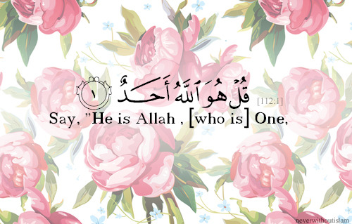 1religion1ummah:  Say, He is Allah, [who is] One.- 1-112