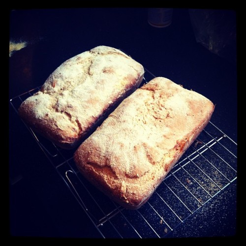 Made English Muffin Bread today.  1st try. #bread #instagramhub #picoftheday  #distinctionhr