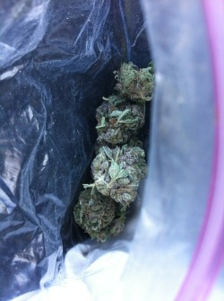 whoever said you cant buy happiness, obviously never bought weed