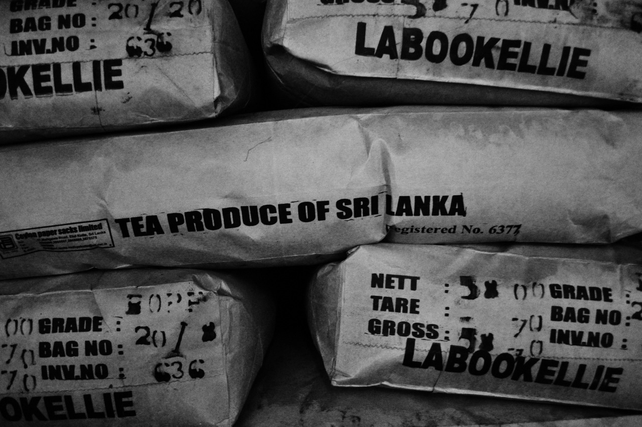 tea produce of sri lanka, nuwara eliya - 2013