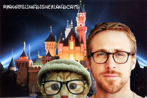 real-hero:  this is a fuckin blog of photos of ryan gosling shopped into photos of disney land and cats  Why yes, yes it is. I'm glad you like it?
