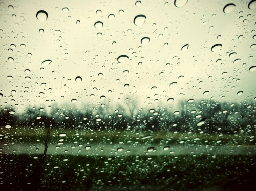 There's just something peaceful about rain on your windshield. – View on Path.