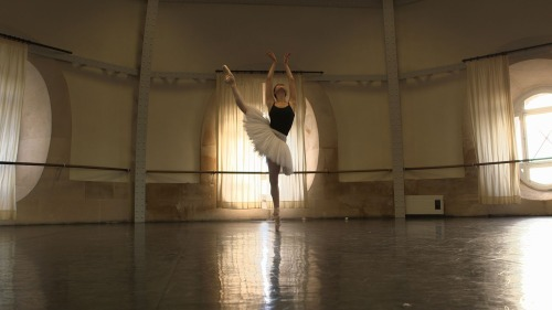 ballet-every-day:  Elegant and poised.
