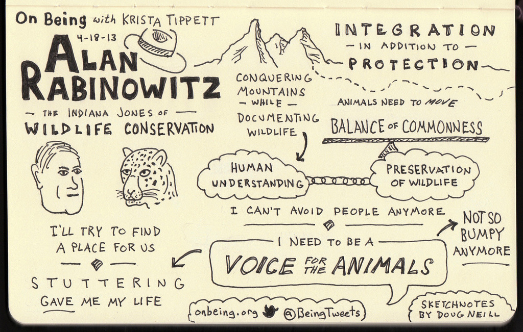 Sketchnotes of On Being interview with wildlife conservationist Alan Rabinowitz.