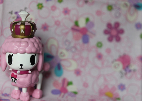 fruitypuddings:  39/365- Tokidoki Paris Poodle by pullip_junk on Flickr.