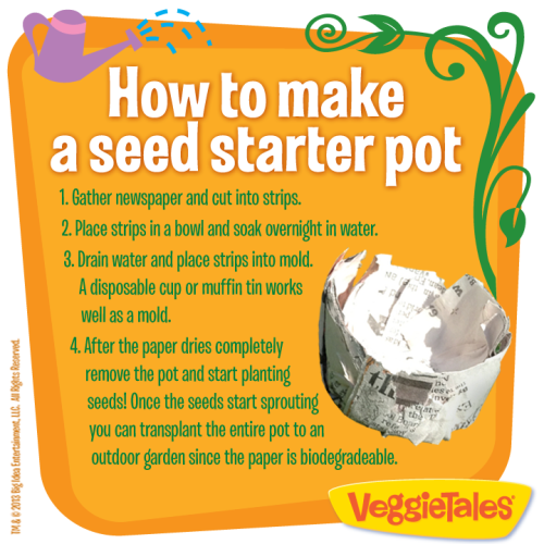 An idea about starting seedlings.