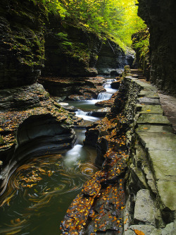 visitheworld:  Watkins Glen State Park in New York, USA (by Matt Champlin).