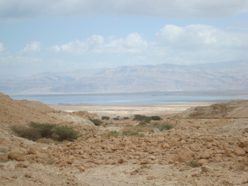 View of the Dead Sea from Ein Gedi, Israel