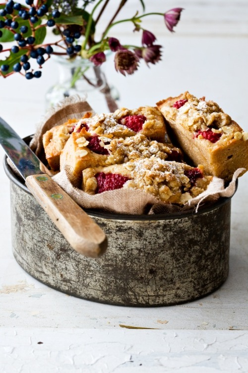 dustjacketattic:  raspberry & apple breakfast slice + oat streusel | by tartine & apron strings