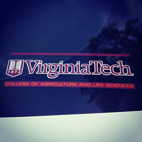 hissweetsouthernlovin:  Finally on my car 👍😊