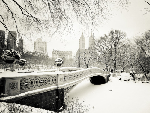 "New York City in the snow. Central Park winter landscape at Bow Bridge.  There is something undeniably magical that occurs as the snow falls  swirling and twirling in the air   until it hits the ground heavy with the weight of a thousand promises:   exultations and dreams held close to the earth   in the stillness between wintry pauses   as the city lays in wait   like a snow-globe resting between giddy shakes of joy.  ——   Bow Bridge is one of Central Park's most iconic structures. It was built between 1859 and 1862 and is shaped like an archer's bow. This particular image was taken during a snowstorm in Central Park, New York City. Bow Bridge sits covered by a beautiful layer of freshly fallen snow as the buildings that line Central Park West sit in the distance just past the snow-laden trees.   I am a bit giddy because it appears that New York City may actually get some snow tomorrow. I read this highly entertaining piece of writing by Andy Newman in the NY Times earlier: ""Tomorrow, It Will Snow, Perfectly"" which had me at hello with its opening paragraph:  ""The ideal city snowstorm, meteorological Platonists say, blankets the landscape without burying it, beautifies but does not burden, transforms and cocoons without paralyzing or even particularly inconveniencing.""   Of course, I always feel a bit like Winona Ryder in one of the best scenes from Edward Scissorhands (the music from that scene = awesome) during the first real snow of the winter season here.   Here's hoping! :)  —-  P.S. Edited to add that yes, this is the same bridge that Dr. Who ran over in the Angels take Manhattan episode.  —-  View this photo larger and on black on my Google Plus page  —-  Buy ""New York Winter - Central Park Snow"" Posters and Prints here, email me, or ask for help."
