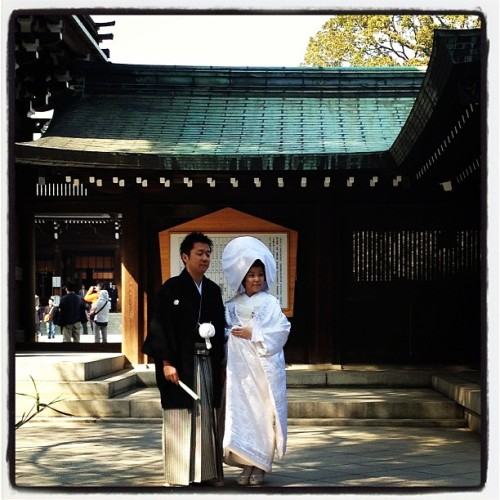 #Blessed: Bride & Groom at the Meiji Jingu Shrine 🌸 #wedding #tokyo #travel #spglife @spg (at 明治神宮 (Meiji Jingu Shrine))