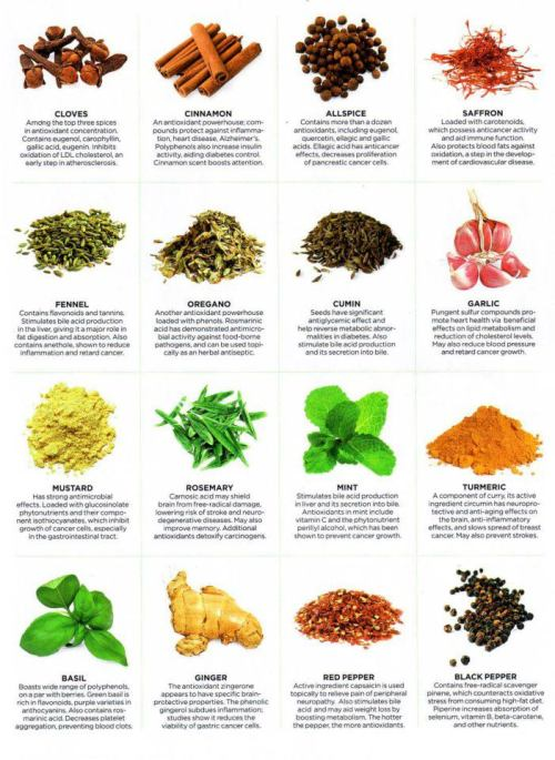 healing properties of herbs.