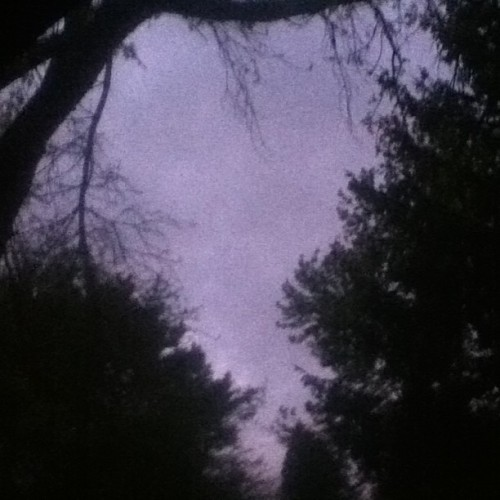 #night #spring #summer #dark #tree #trees #sky #cloud #clouds #cloudy #oakville