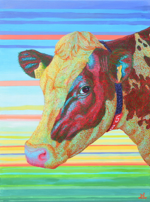 tumblropenarts:  Cow Acrylics on canvas, 80 x 60 cm by Jochem Grin tumblr website