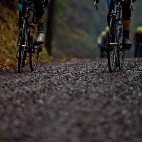 velotone:  Gravel enjoyment