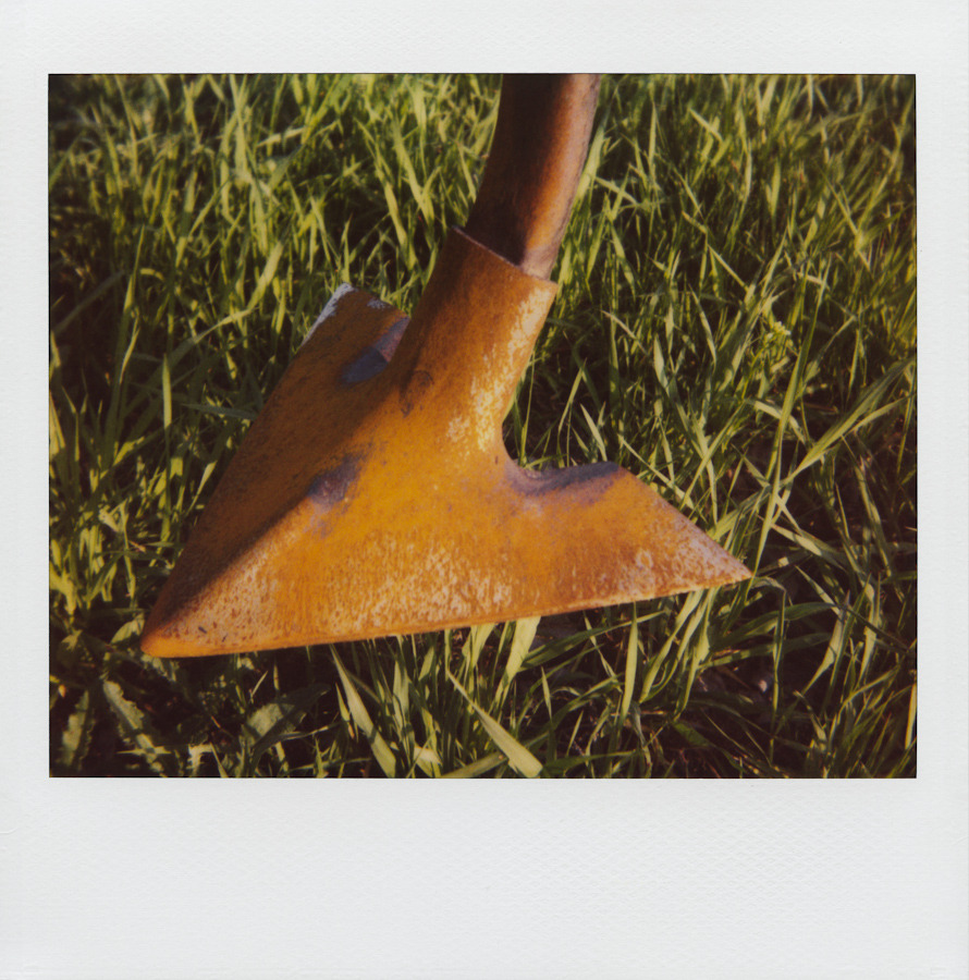 This is a rusty shank and leaves of grass.