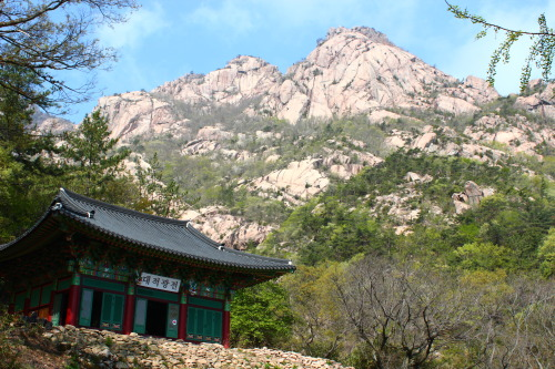 월출산 (Wolchulsan): The best and hardest hike in Korea!  More coming soon.