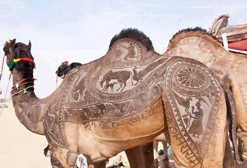 ledecorquejadore:  Another version of camel haircut art. What amazing work! (via Pinterest)